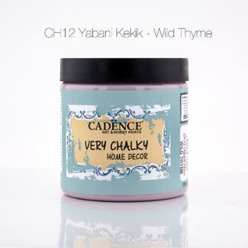 CH12 Yabani Kekik - 500ML Very Chalky Home Decor resmi